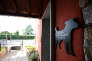 villa simba pet friendly homestay